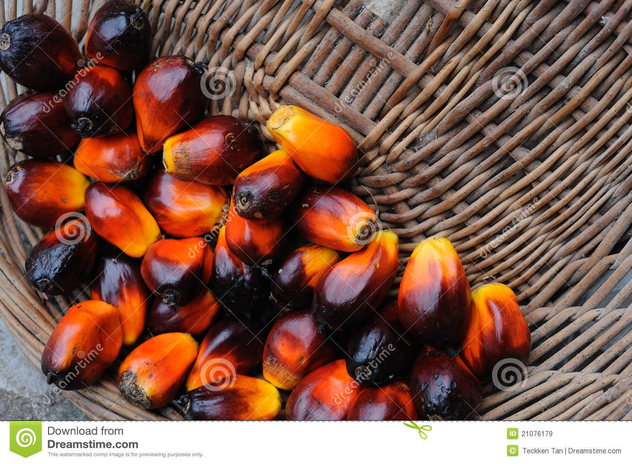 palm fruit oil healthy is it healthy to only eat fruit