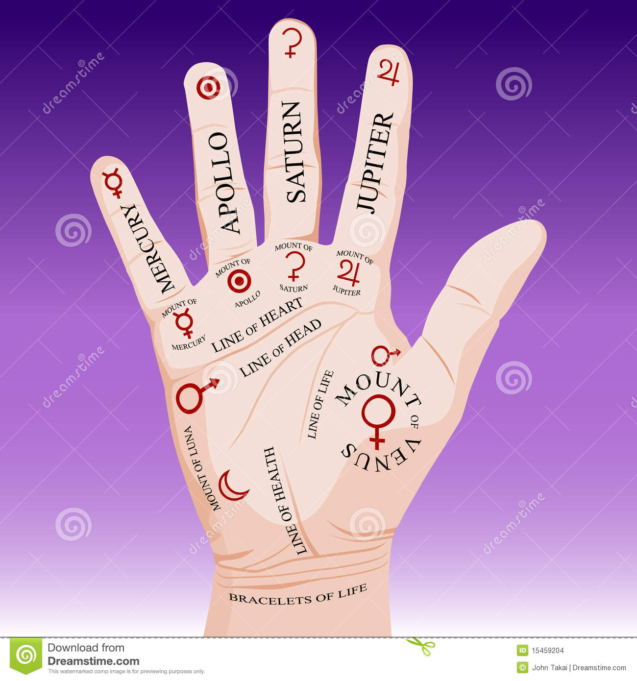 Guessing on the hands (palmistry): the value of lines 75