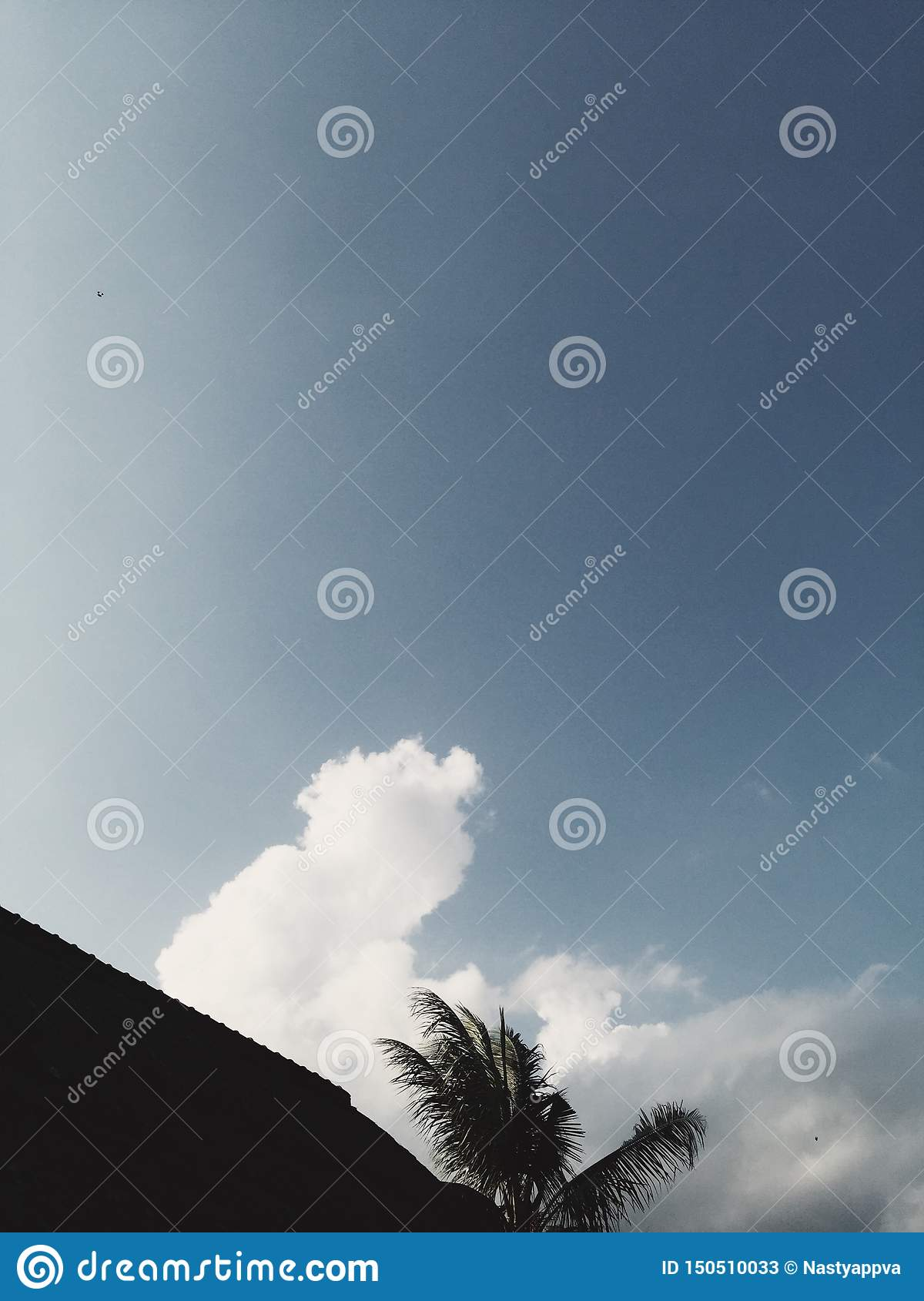 Palm and roof silhouette at blue cloudy sky at background