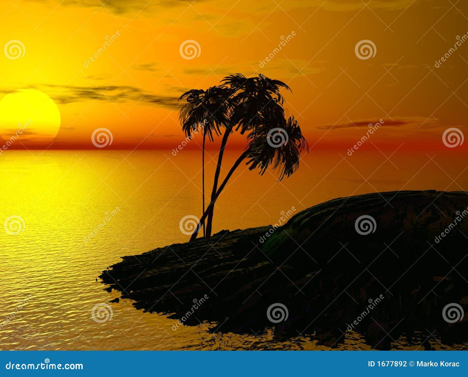 Palm słońca