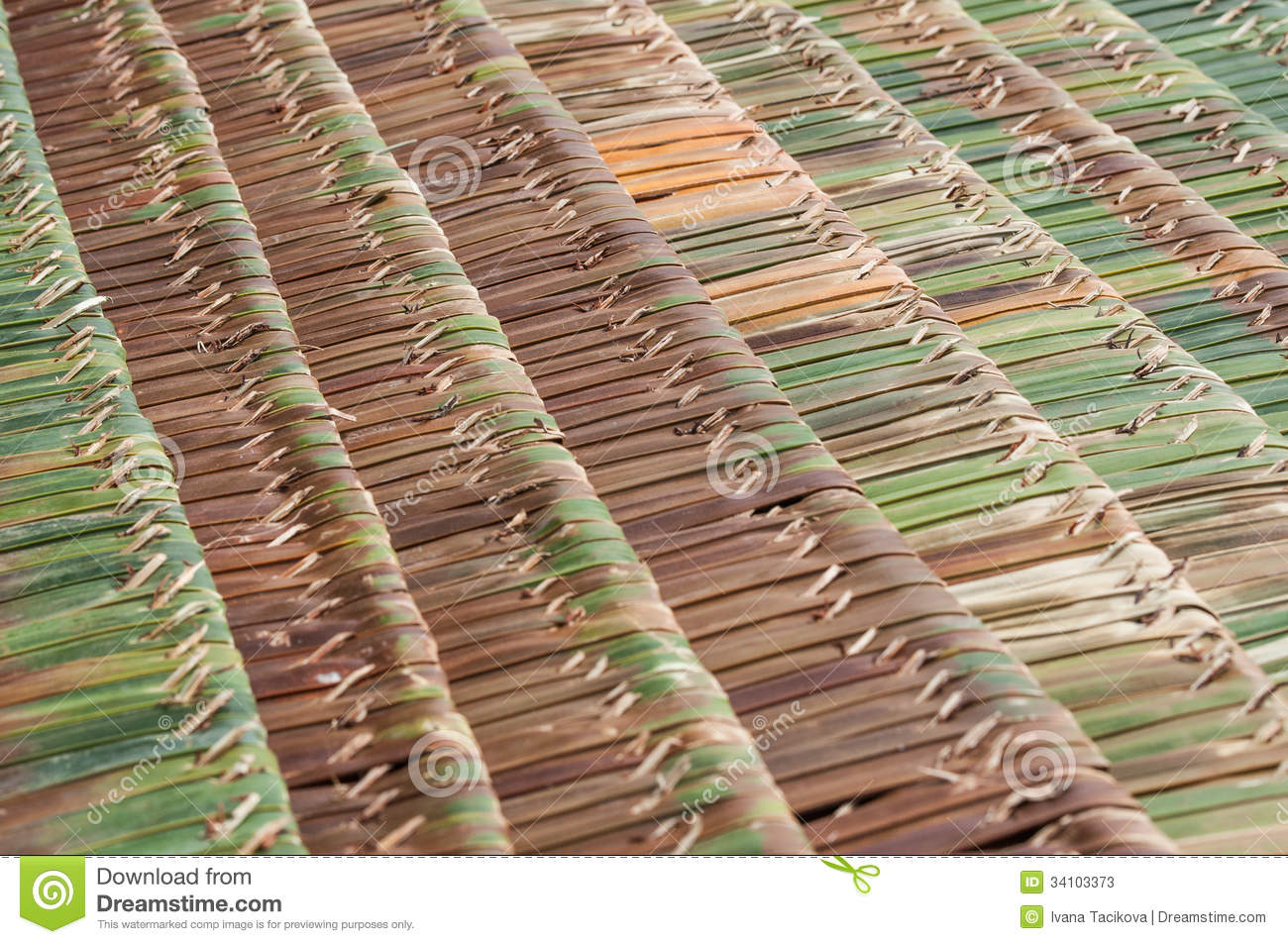 Palm thatch roofs stock photos image 34103373 for Does new roof affect appraisal