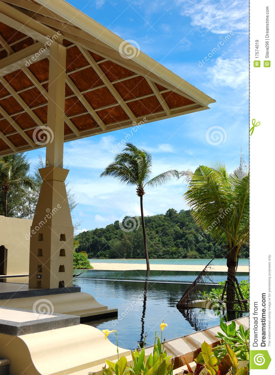 Palm tree at the beach and swimming pool royalty free - Palm beach swimming pool ...