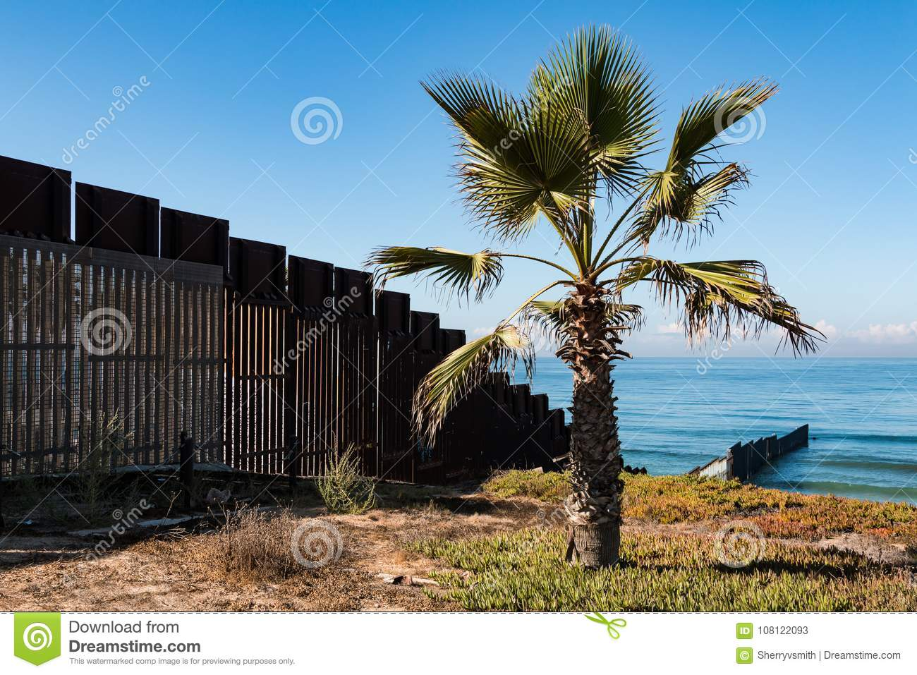 Palm Tree at Border Field State Park in San Diego Next to International Border Wall