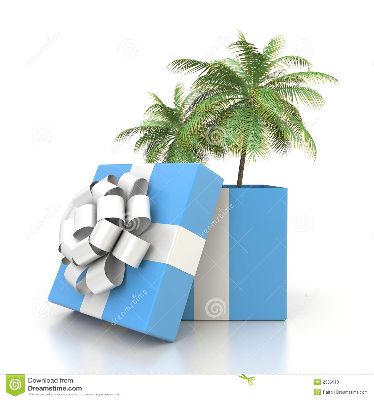 Palm Tree From The Gift Box Stock Image - Image: 23869131
