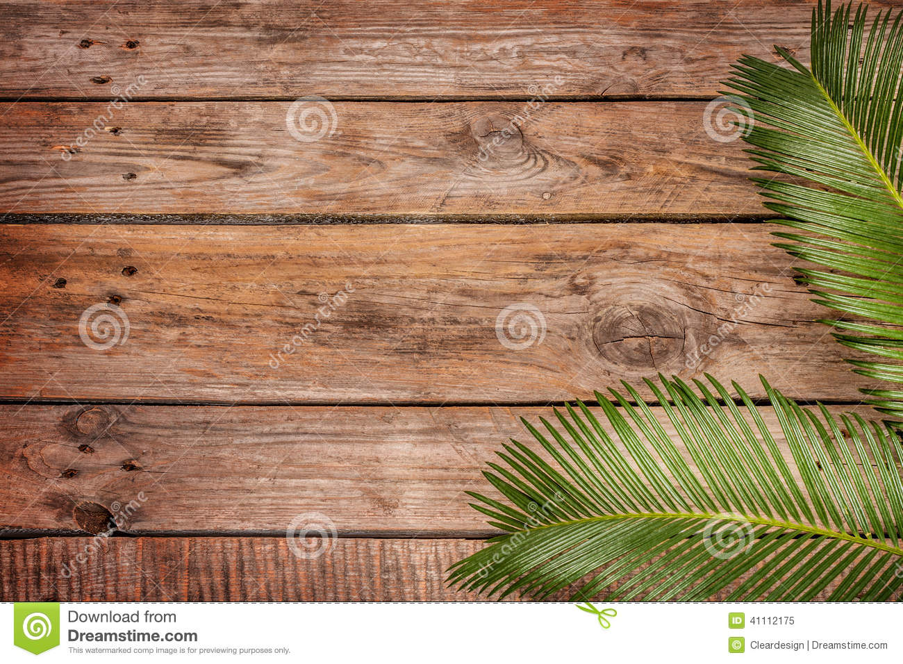 Palm Tree Leaves On Vintage Planked Wood Background Stock