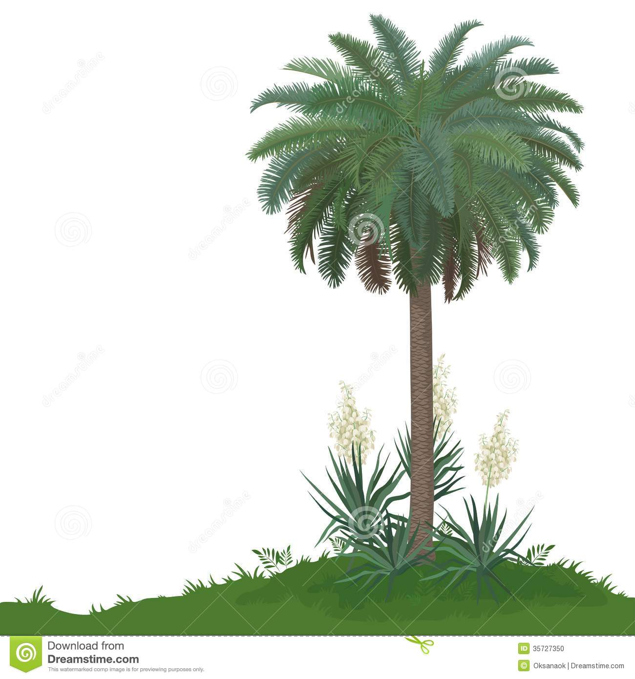 palm tree and plants yucca stock vector illustration of leaf 35727350. Black Bedroom Furniture Sets. Home Design Ideas