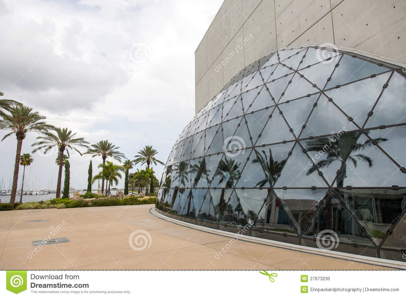 Palm Tree Reflected In Modern Building Editorial Image - Image of ...