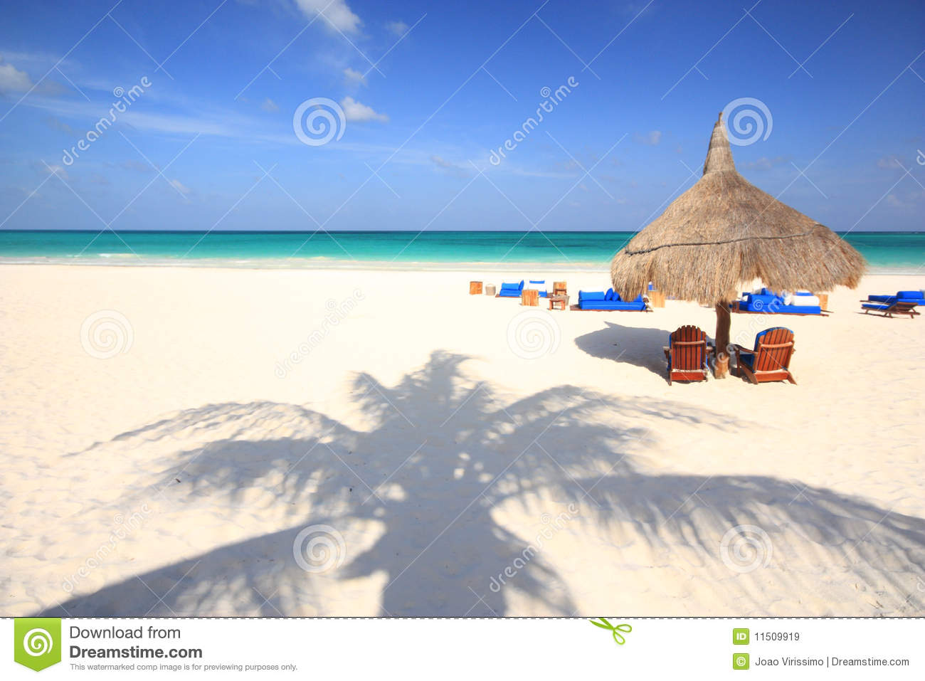 Palm tree shadow on tropical beach