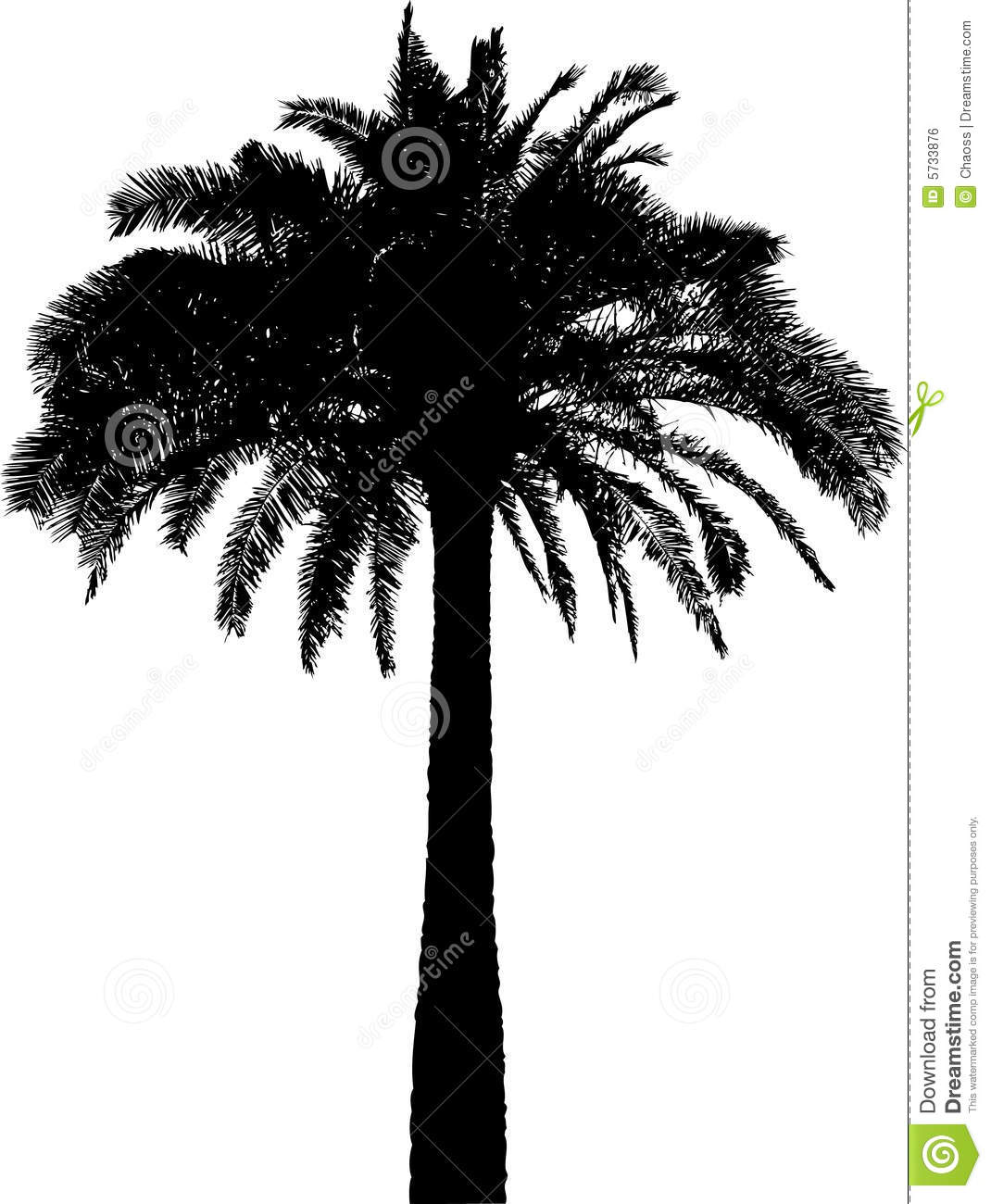 palm tree silhouette on white stock vector image 5733876. Black Bedroom Furniture Sets. Home Design Ideas