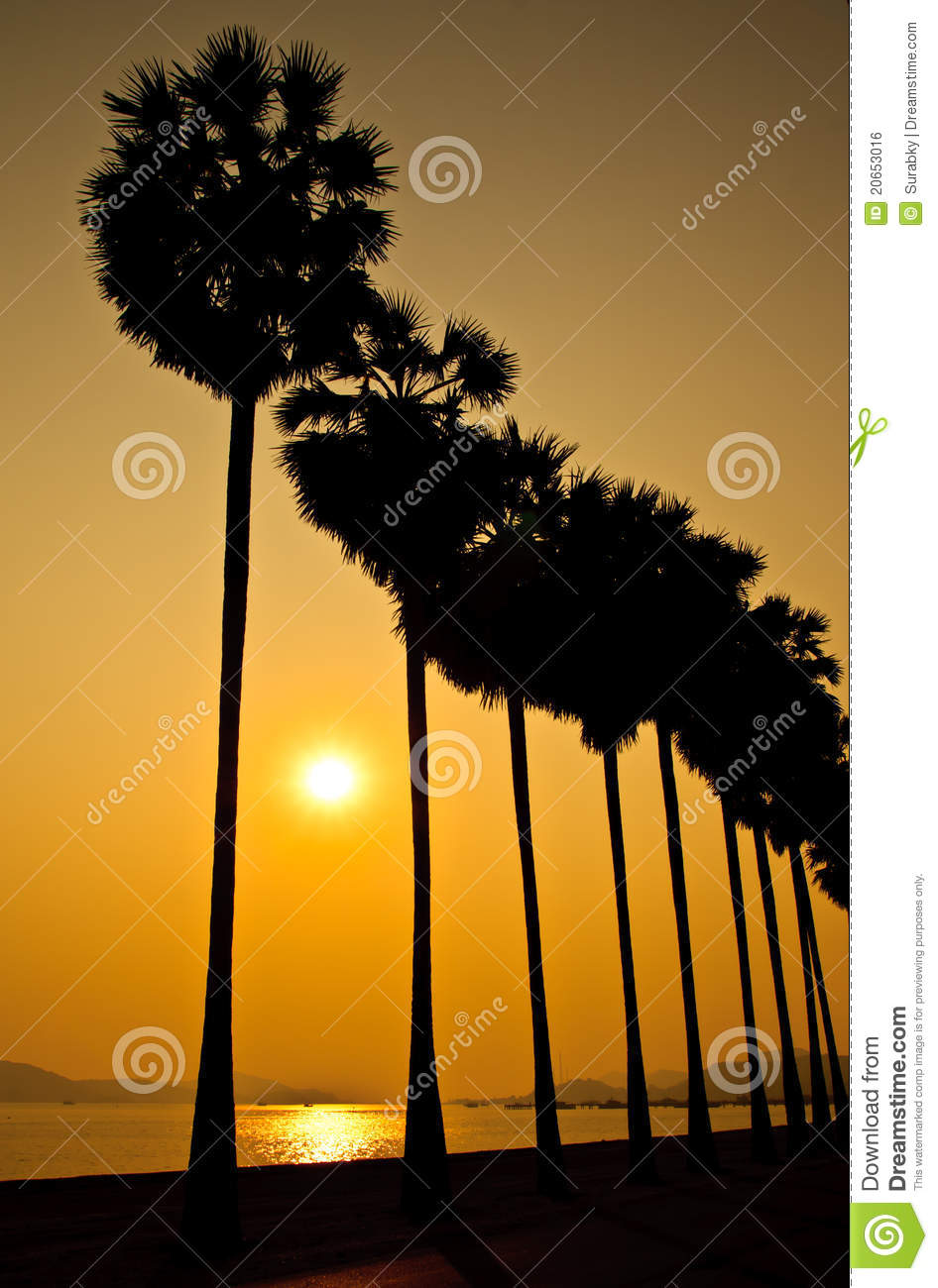 Beach Clouds Colors Dark Sea Sky Sun Sunset Trees Waves Kootation
