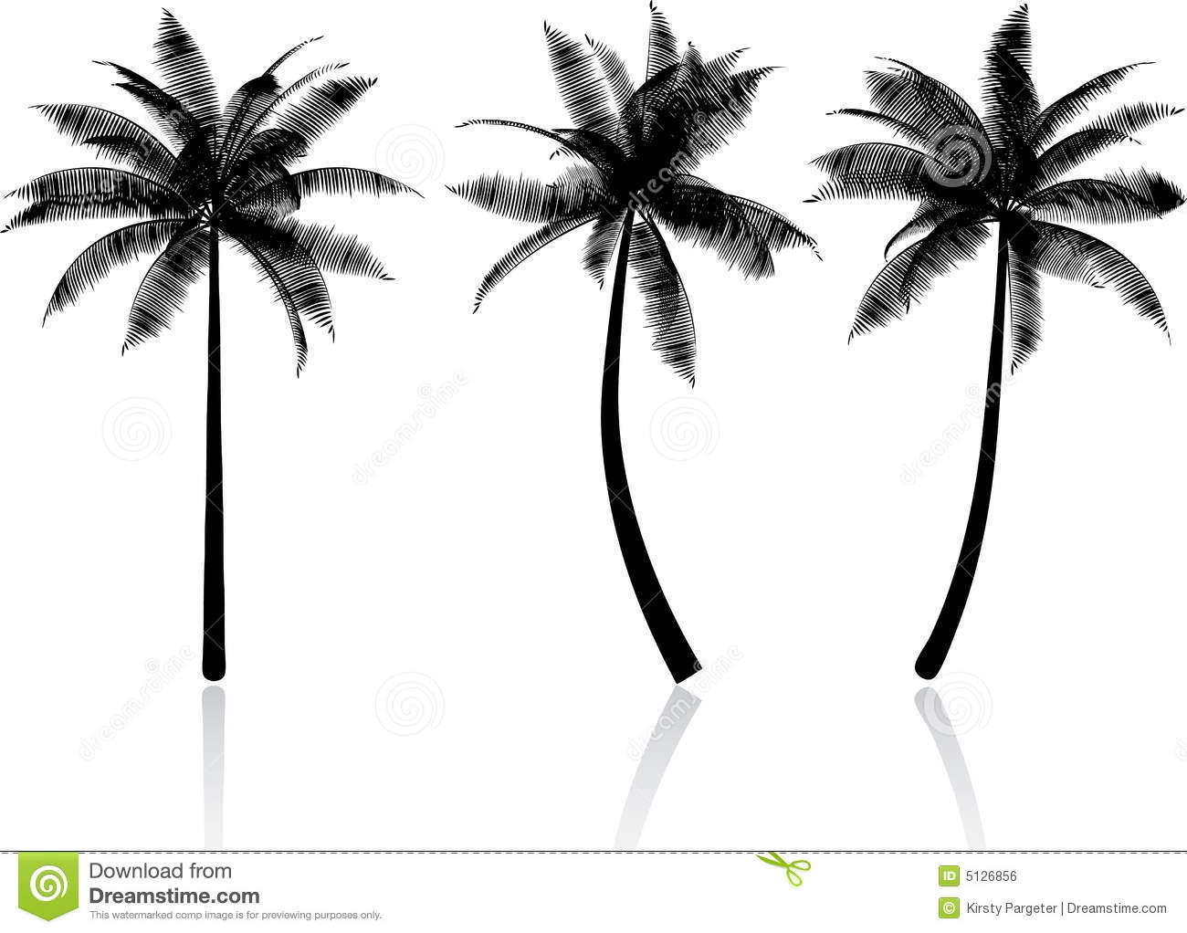 Palm Trees Royalty Free Stock Image - Image: 5126856 - photo#49