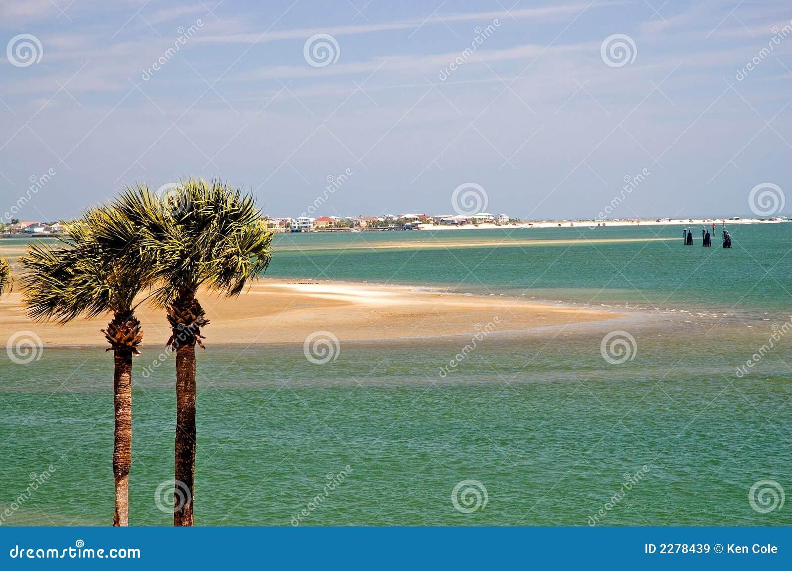 Palm Trees And Florida Bay Stock Image Image Of Coast 2278439