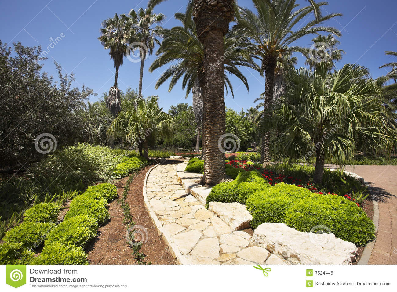 Tree Flower Bed : Tree Flower Bed : Flower Beds with Palm Trees