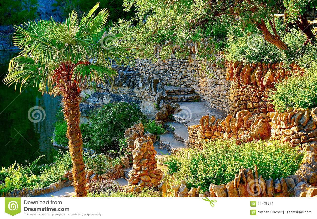 Palm Tree Grotto Stock Photo Image 62429731