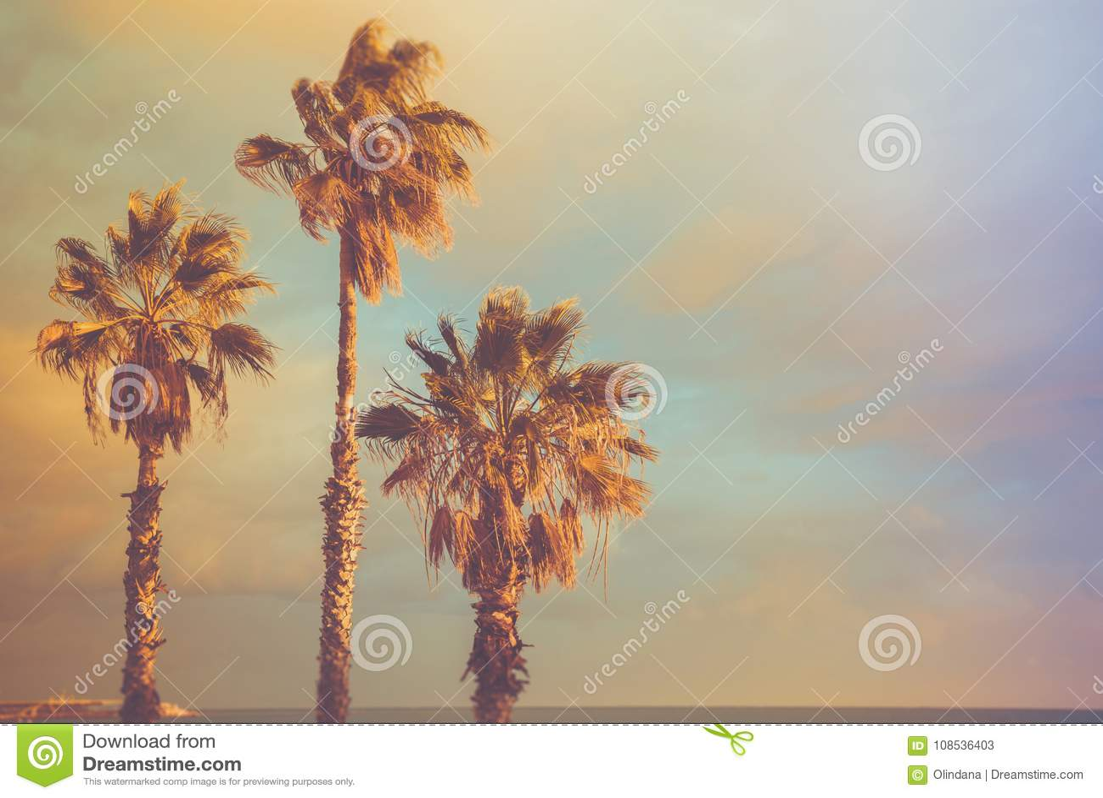 Palm Trees at Seashore Dramatic Beautiful Blue Pink Peachy Sky at Sunset. Pastel Colors Flare 60s Vintage Toning.Calm Sea Horizon