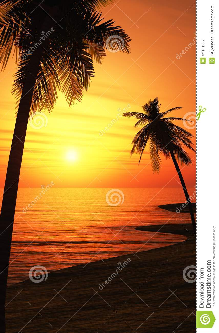 Palm Trees On Sunset Beach