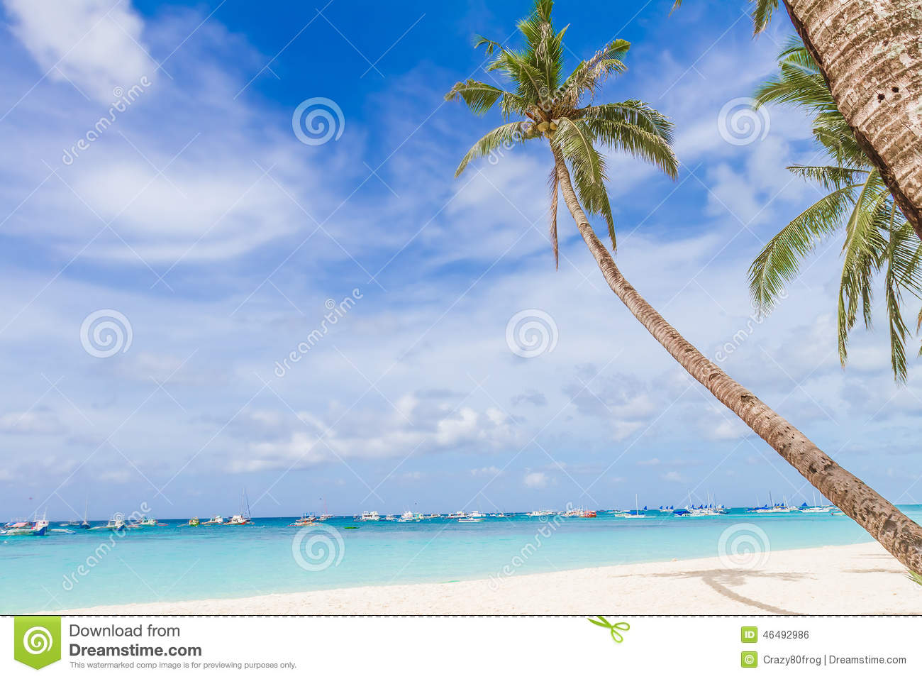 vacations summer palm - photo #41