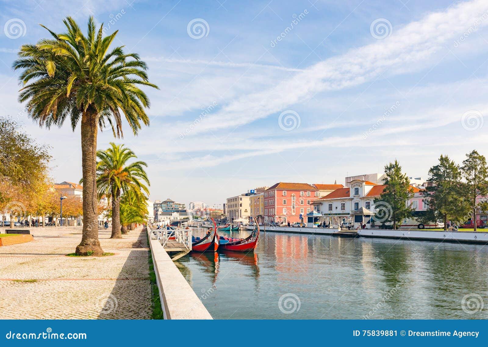 Palma Aveiro soleggiata della gondola del crogiolo di canale