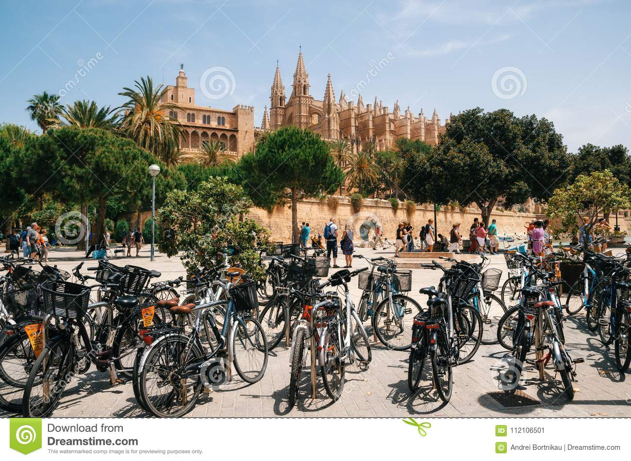The Cathedral Of Santa Maria Of Palma And La Almudaina Royal ...