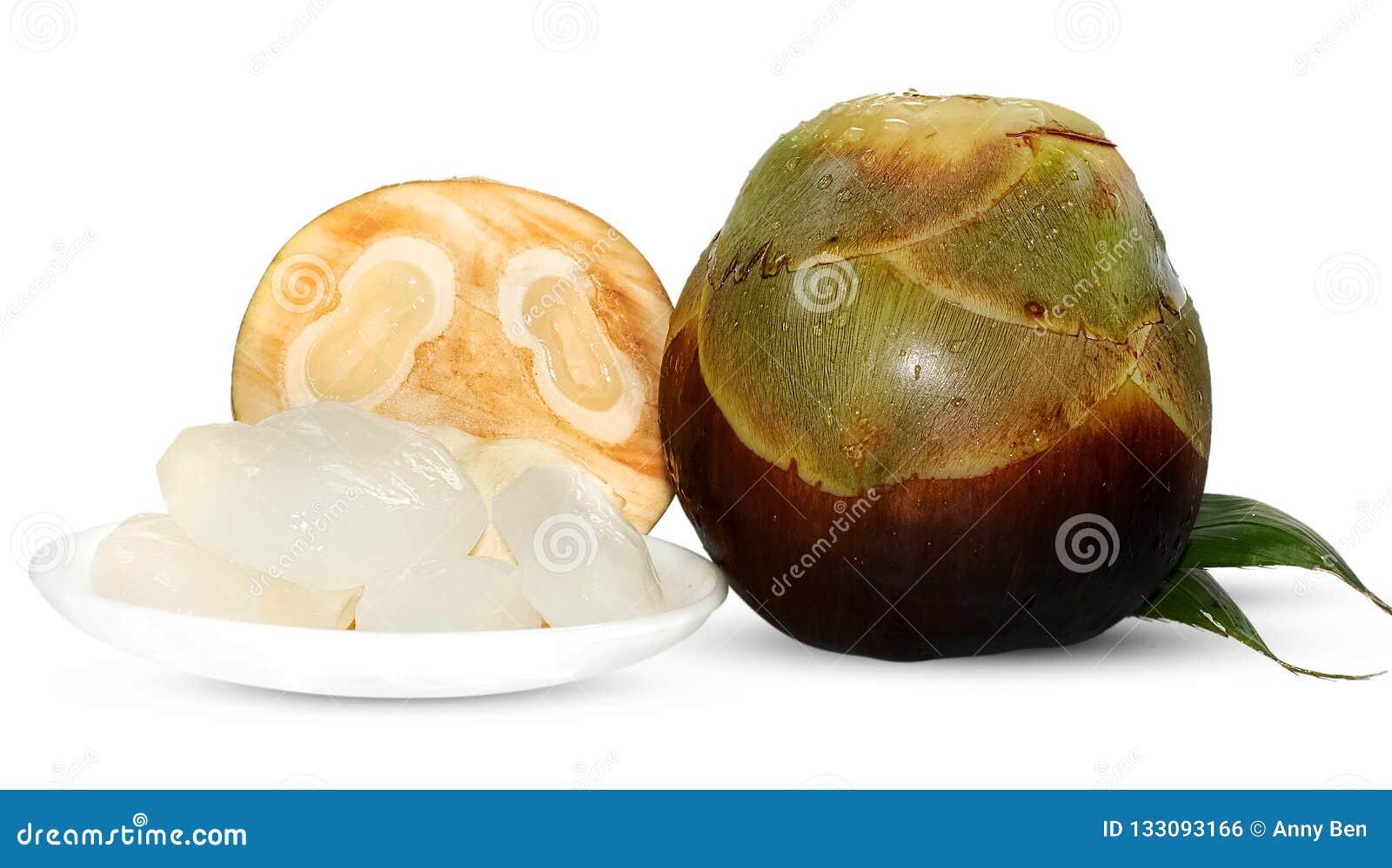 Palma de Palmyra, palma de Toddy ou de palma de açúcar fruto isolado no branco