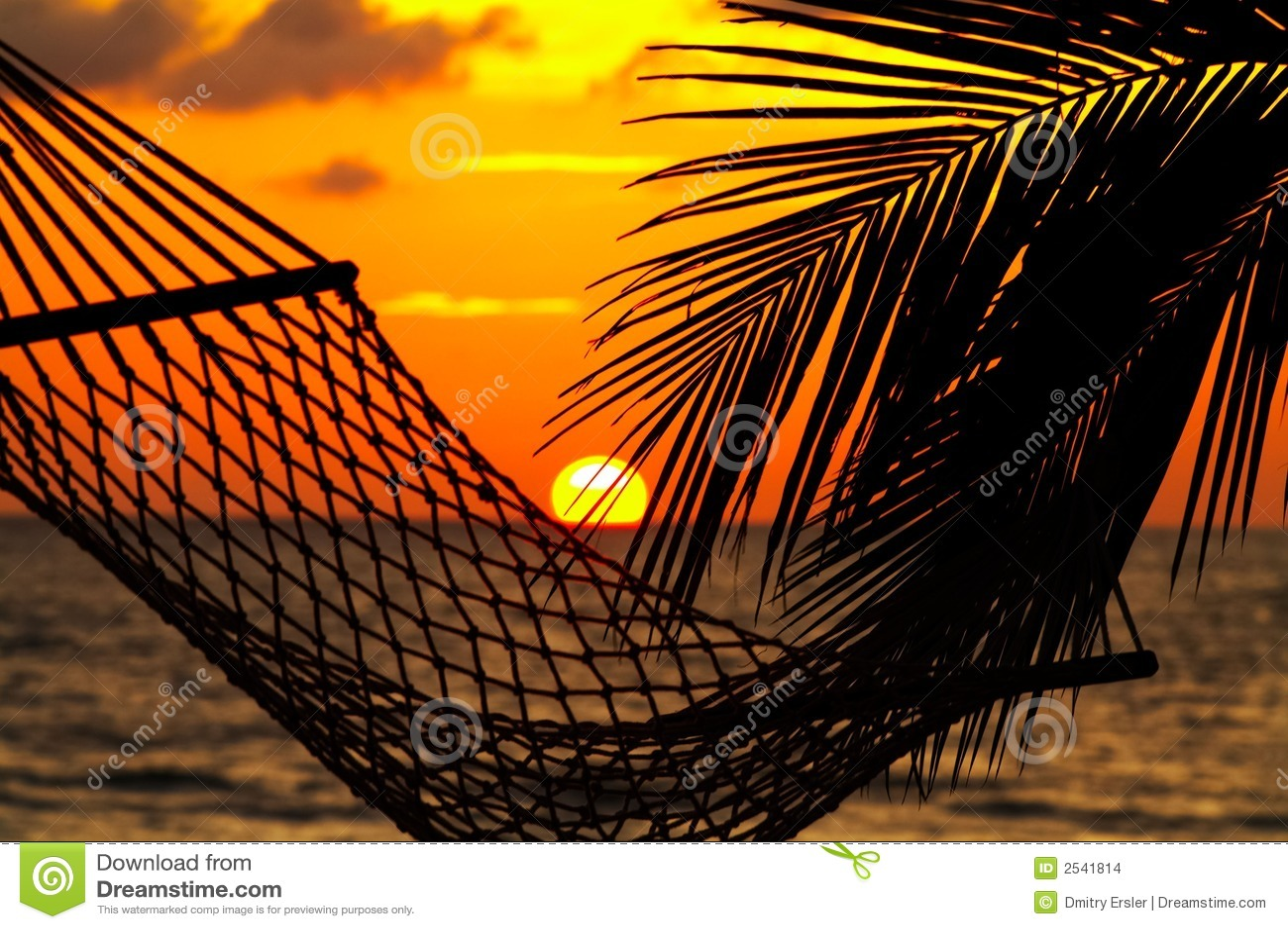 Palma, hamaca y puesta del sol