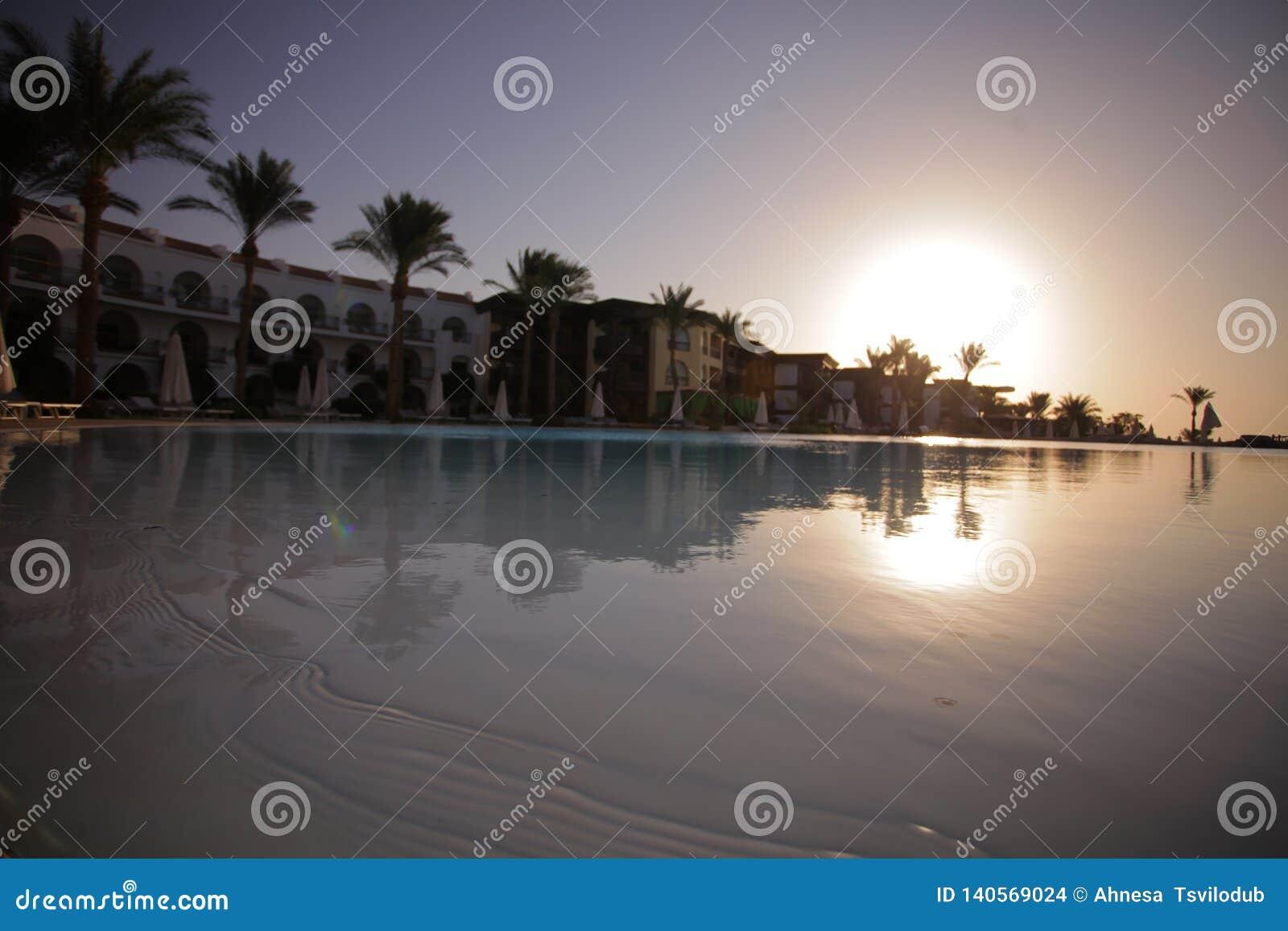 Palma - rest - pool - weekend