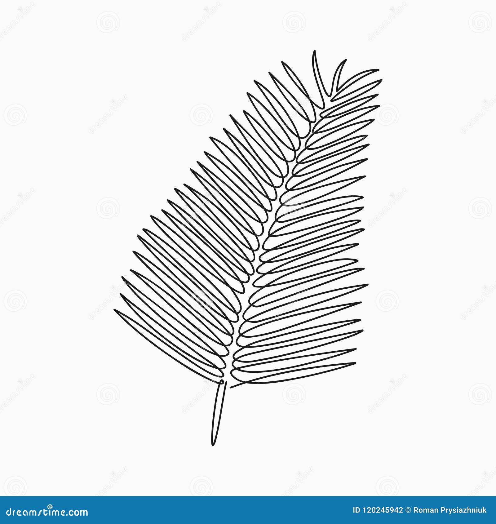 Palmblatt - ein Federzeichnung Ununterbrochene Linie exotische Anlage Von Hand gezeichnete unbedeutende Illustration