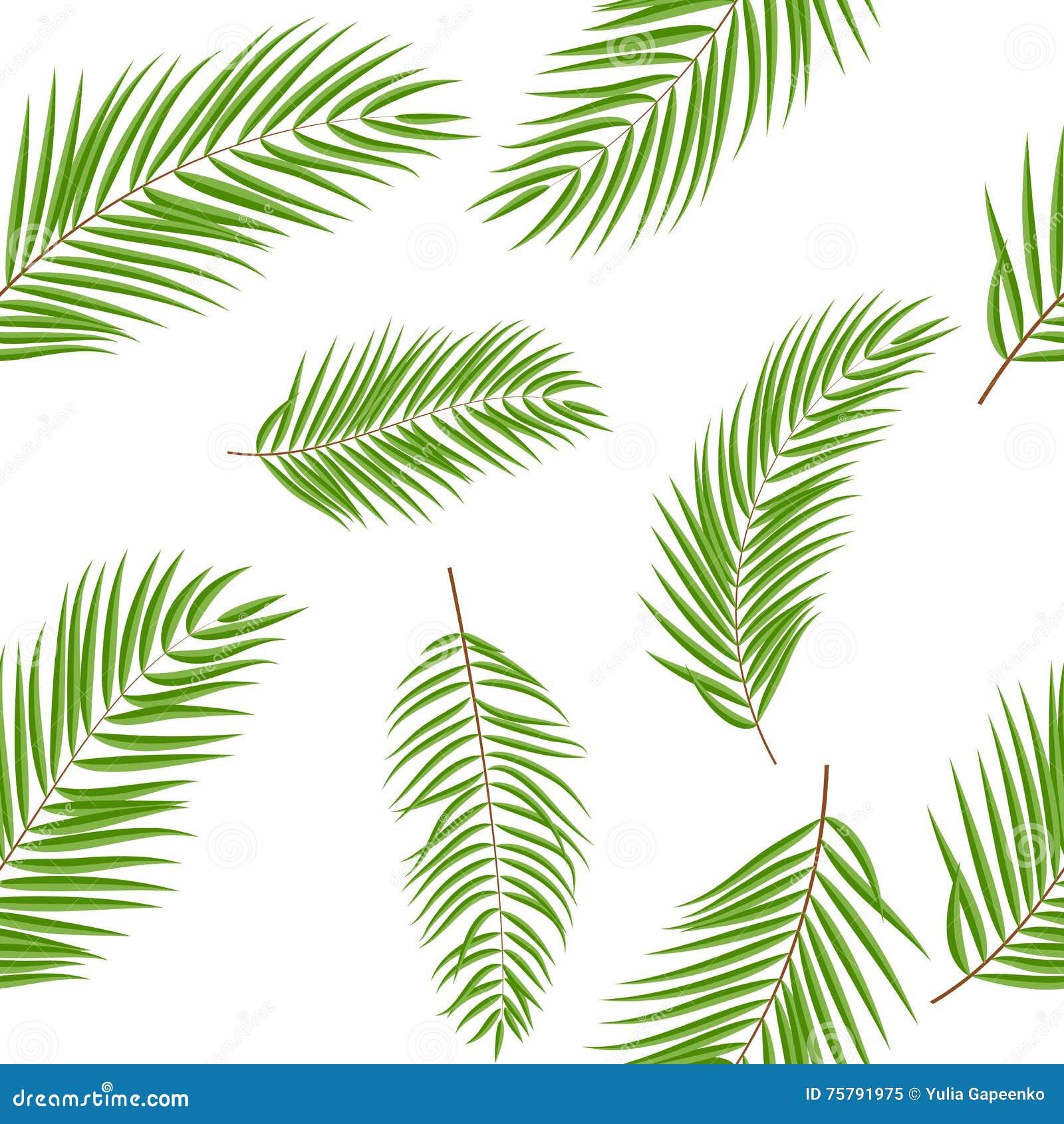 palme blatt schattenbild nahtloser muster hintergrund vektor abbildung bild 75791975. Black Bedroom Furniture Sets. Home Design Ideas