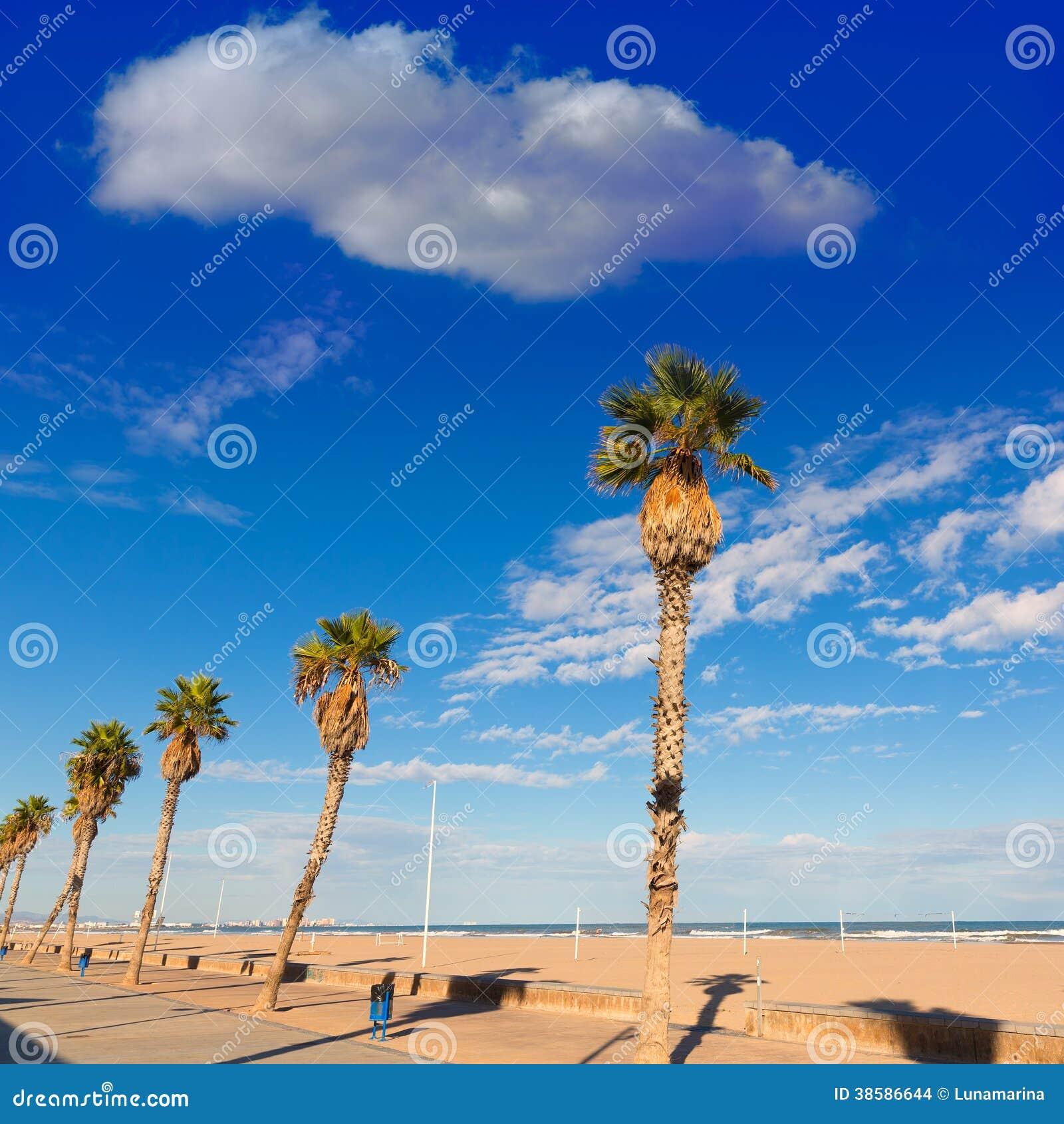 Palme della spiaggia di valencia malvarrosa las arenas for Spiaggia malvarrosa valencia