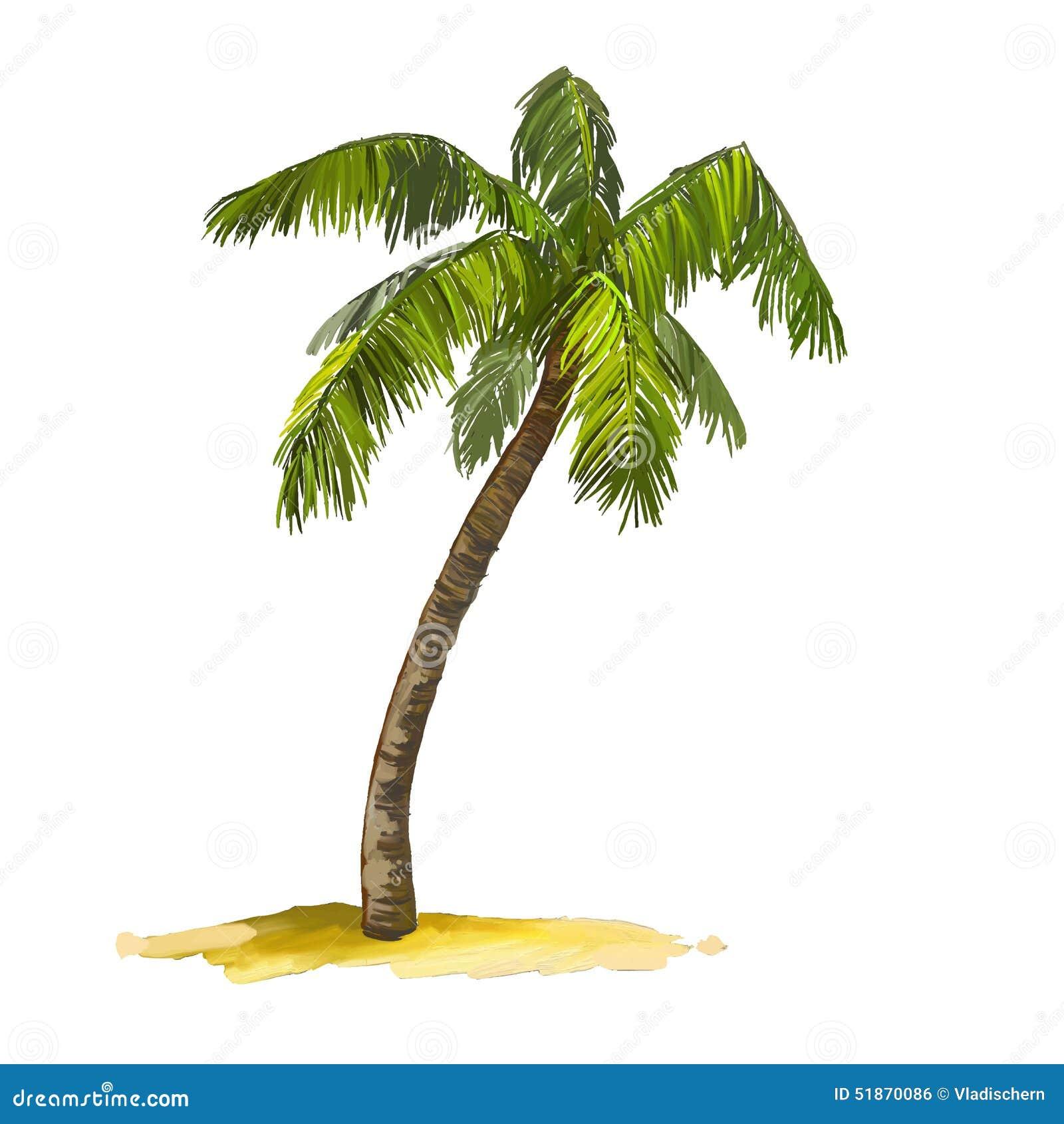 coconut tree watercolor