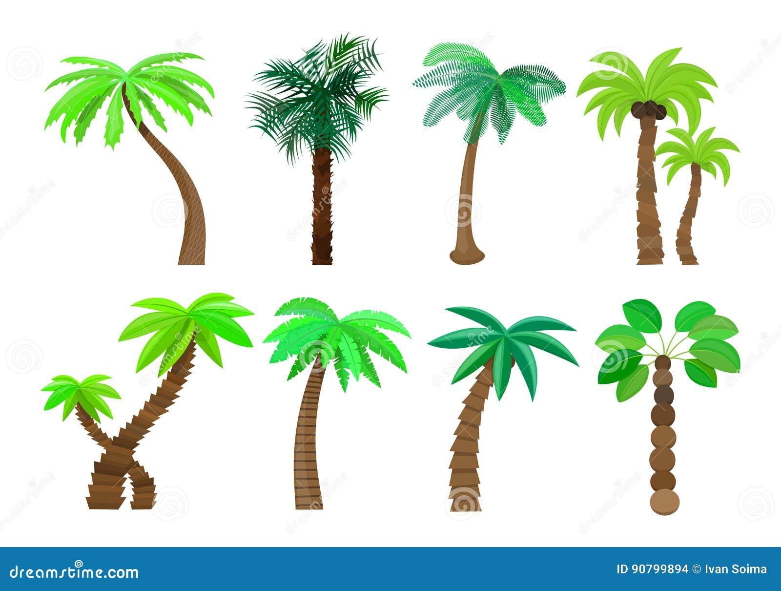 A Palmeira No Estilo Dos Desenhos Animados Ajustou Se Em Uma