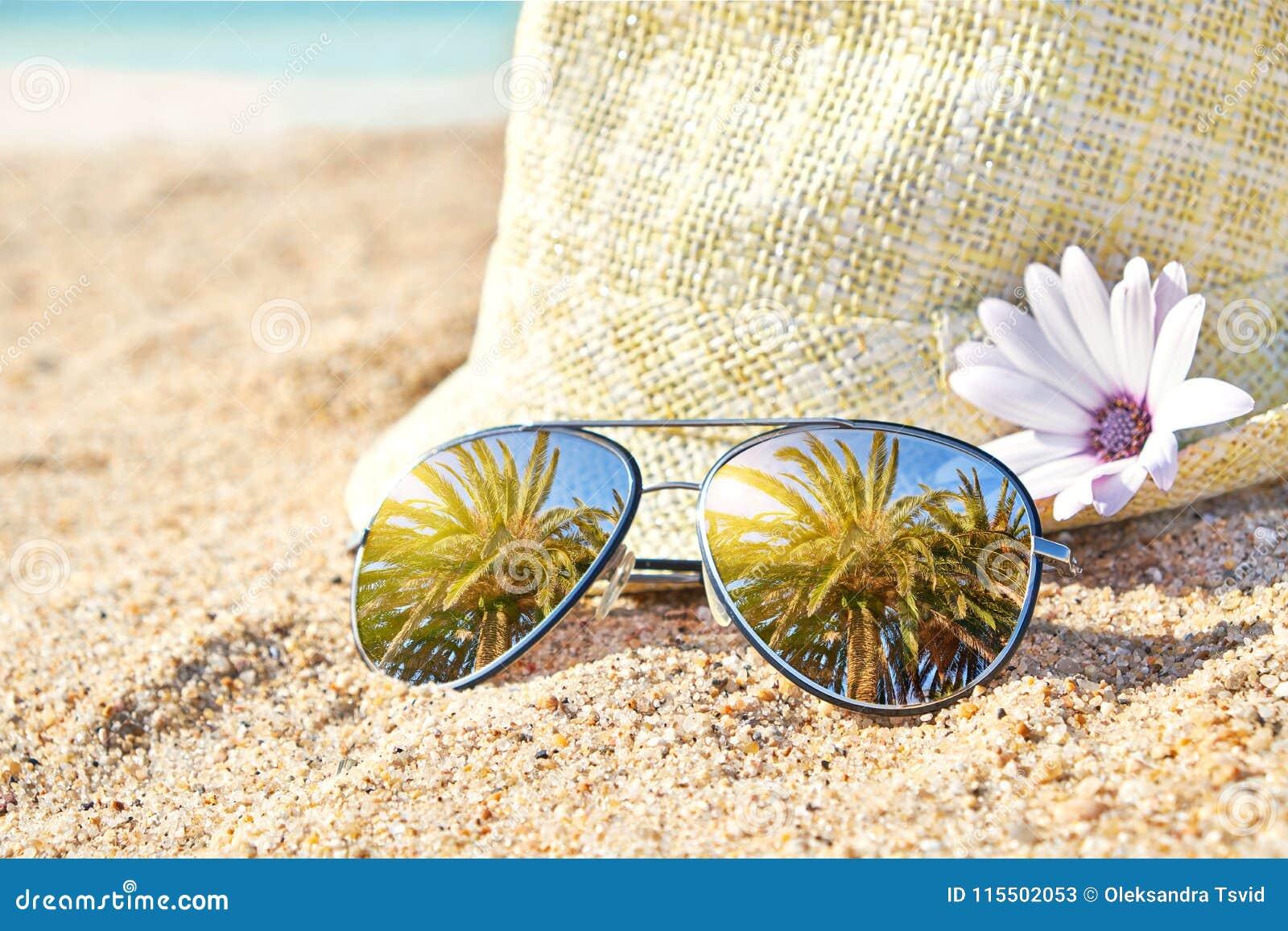 Palmeiras em óculos de sol espelhados à moda na areia contra o chapéu de  palha Conceito tropical das férias de verão Dia ensolarado do verão na praia 2090ff11a01