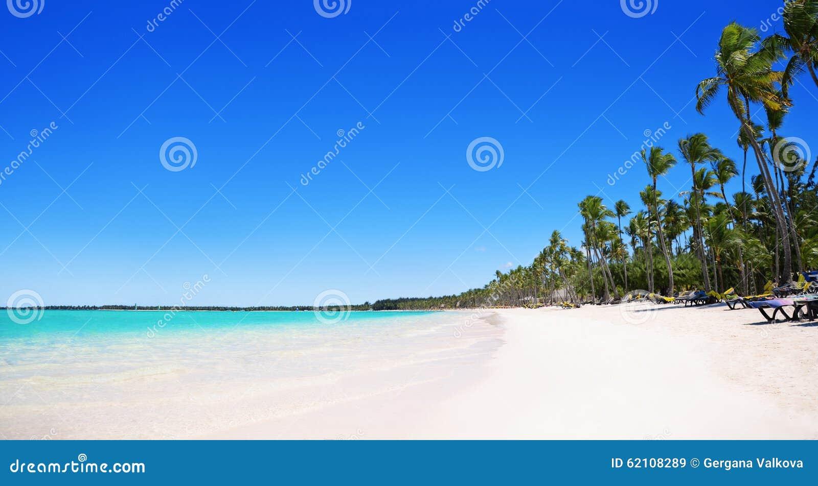 Palmeiras na praia tropical, Bavaro, Punta Cana, dominiquense