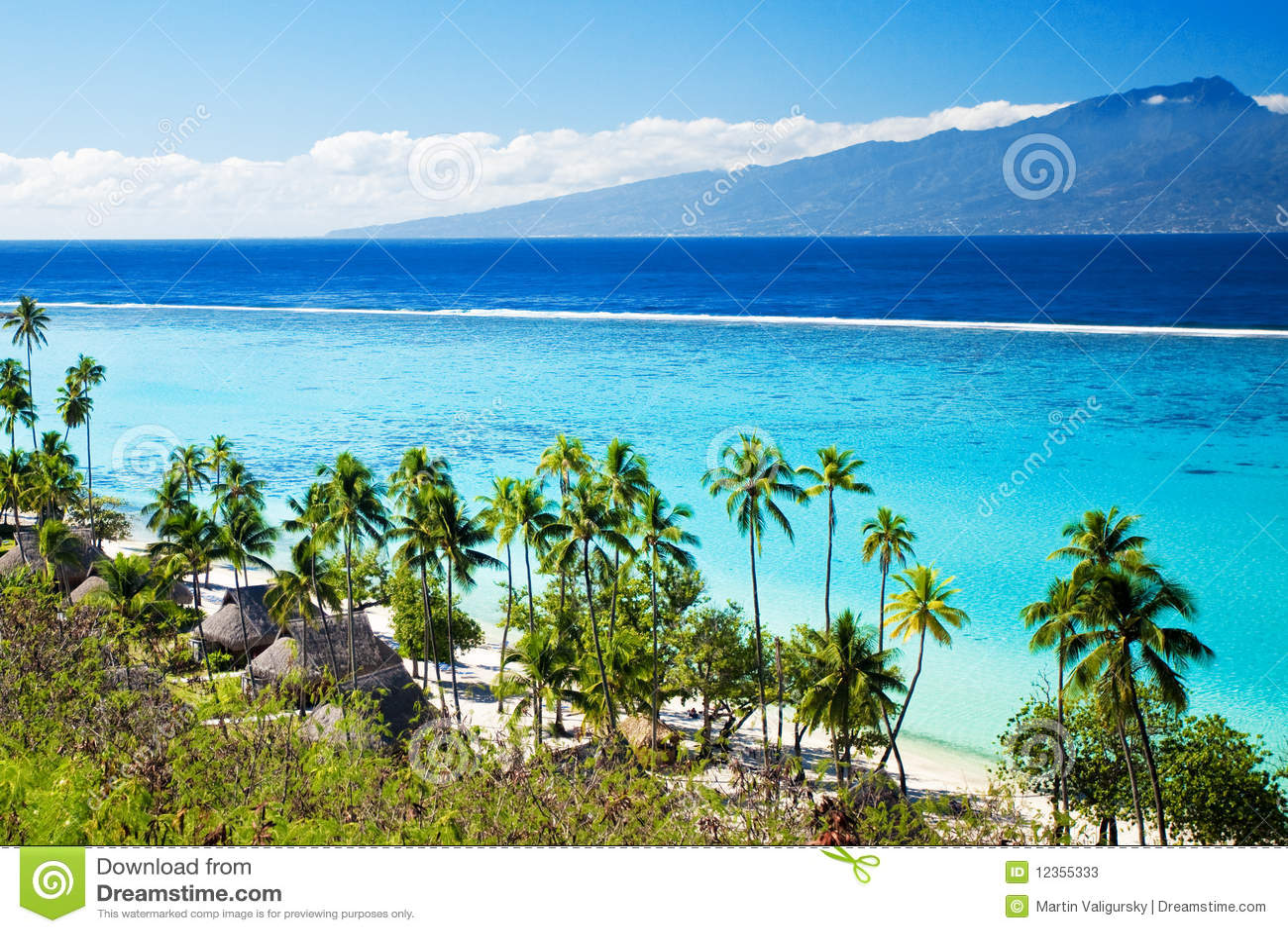 Palmeiras na praia tropical em tahiti