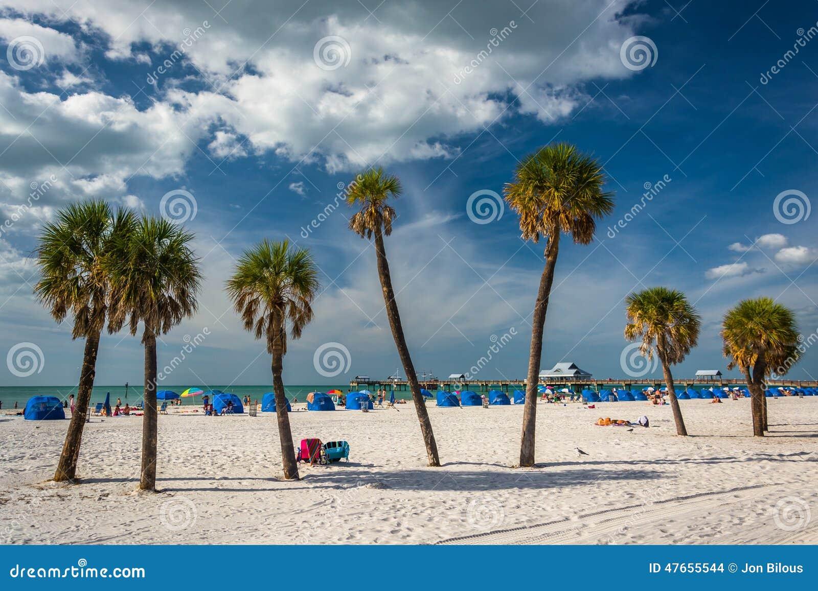 Palmen auf dem Strand in Clearwater setzen, Florida auf den Strand