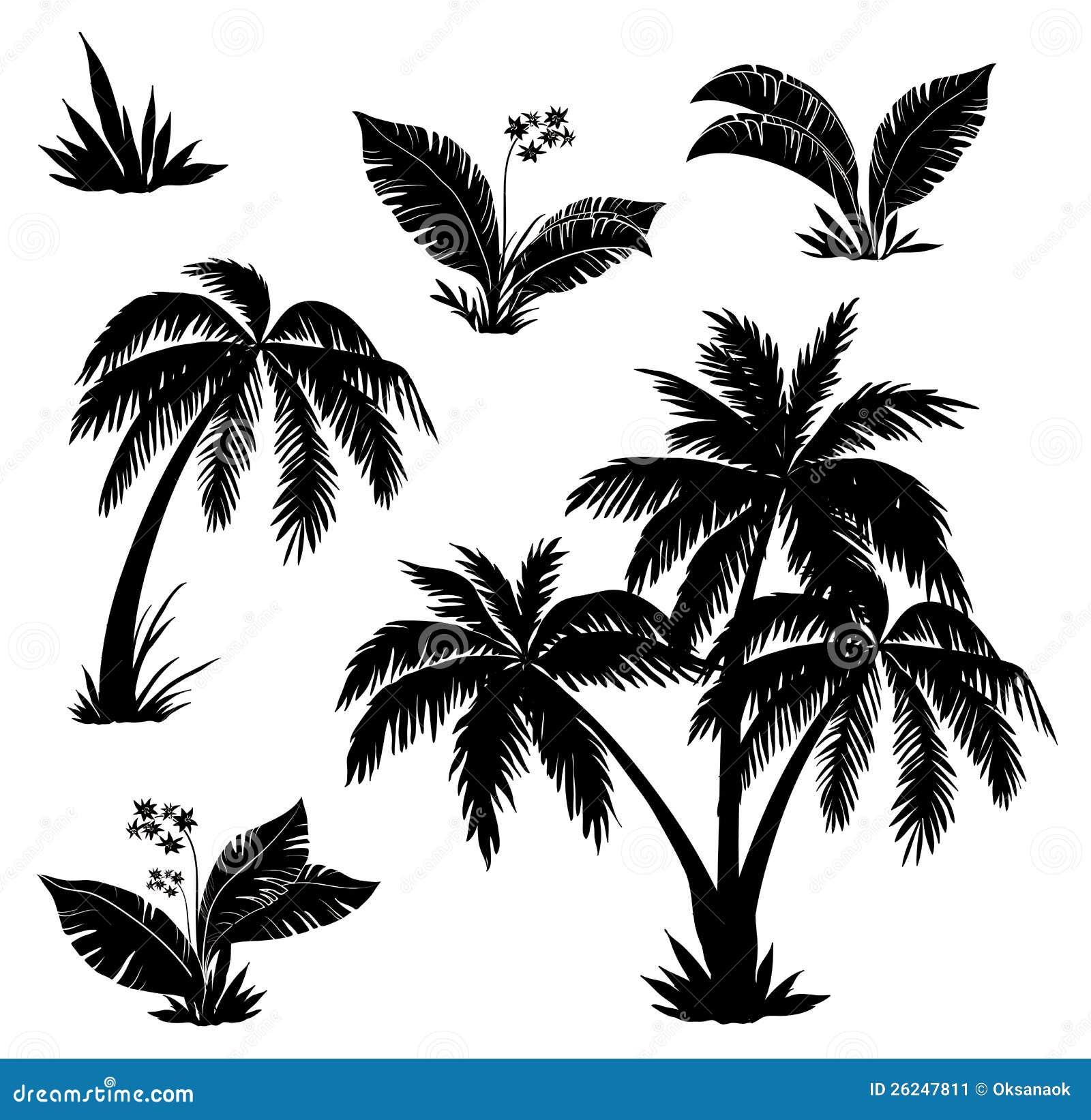 palmen blumen und gras schattenbilder stockbild bild. Black Bedroom Furniture Sets. Home Design Ideas