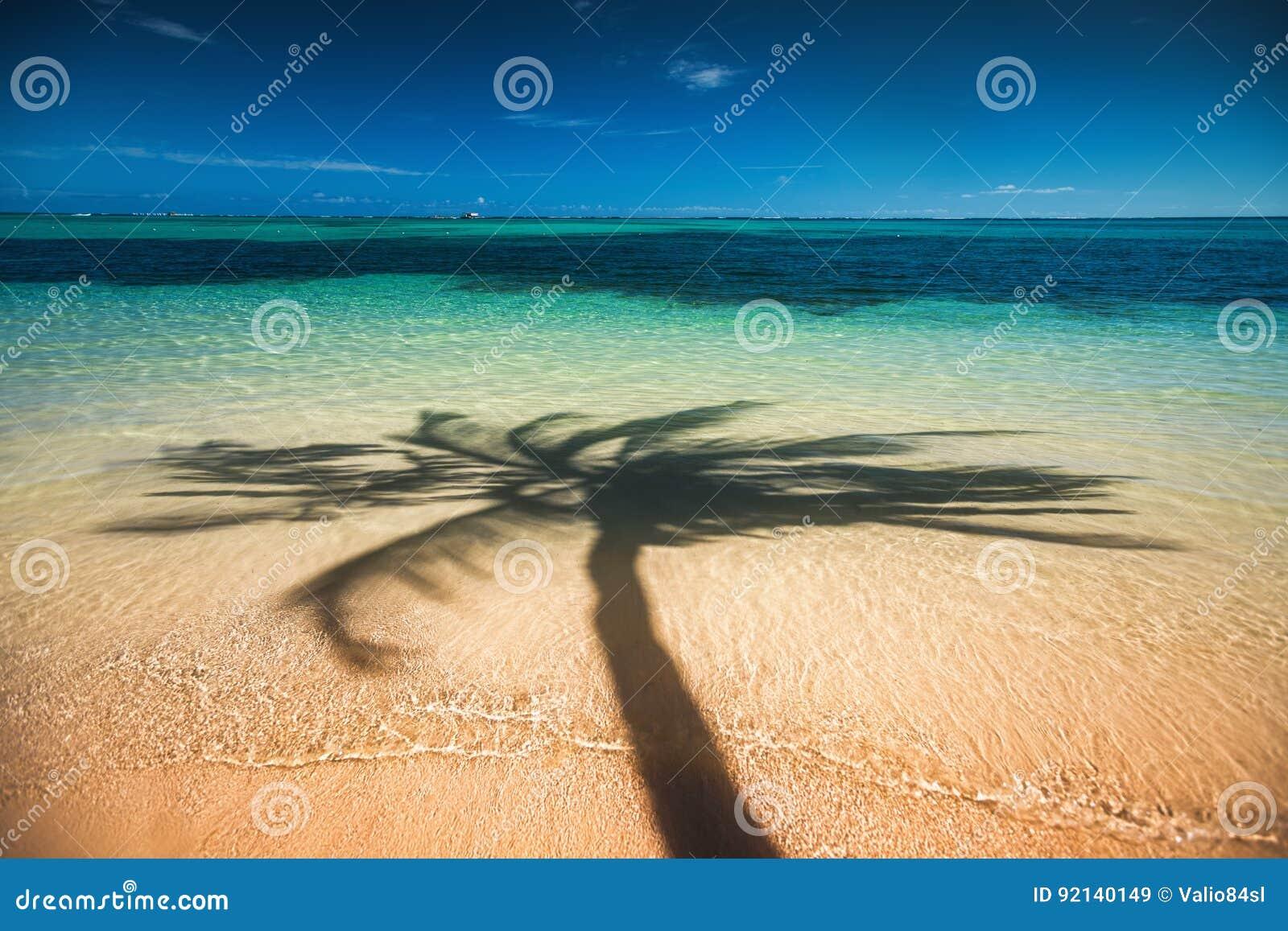 Palmenschaduw op het tropische strand Punta Cana, Dominicaans aangaande