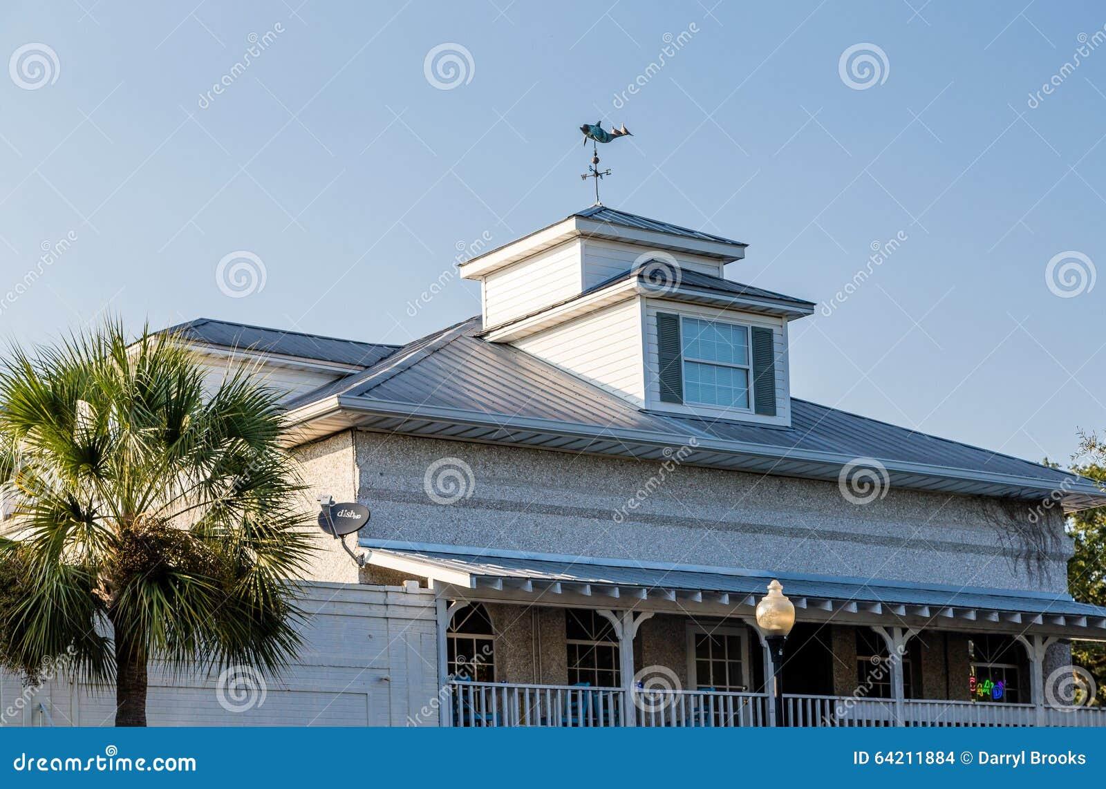 Palmera por el tejado y la cúpula