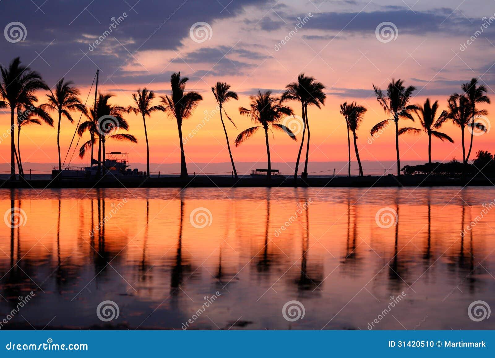 Palmeras tropicales de la puesta del sol de la playa del paraíso