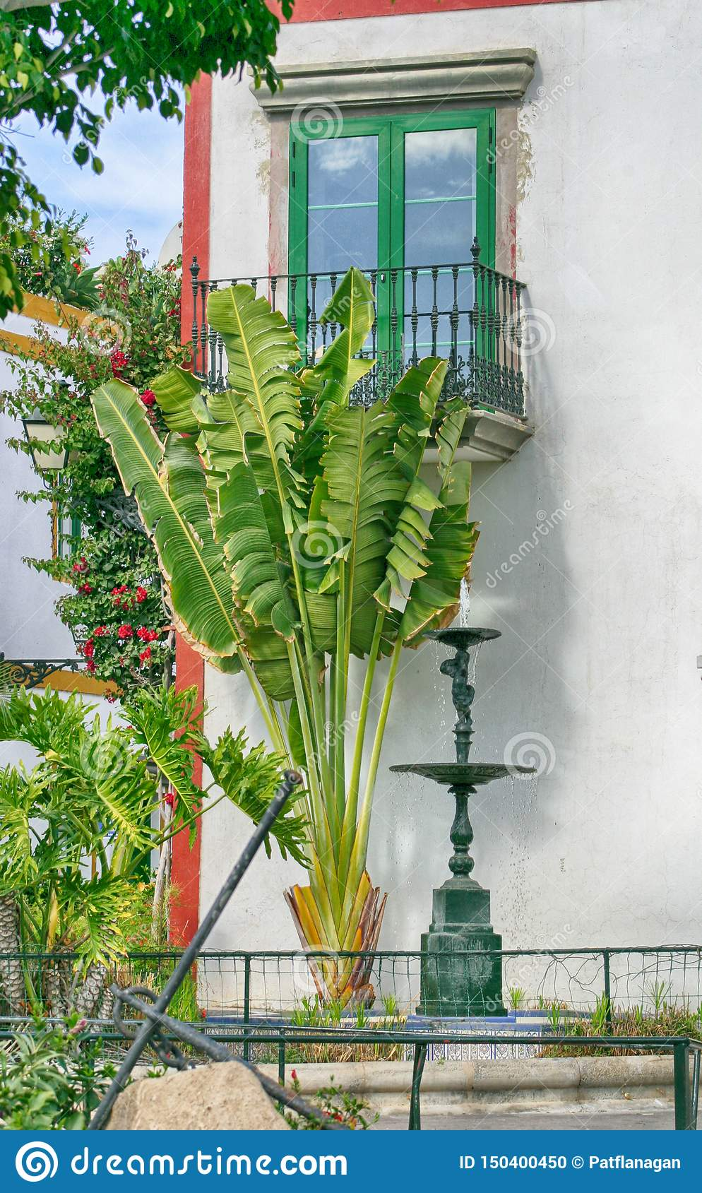 Palmeras y fuente delante de una ventana española