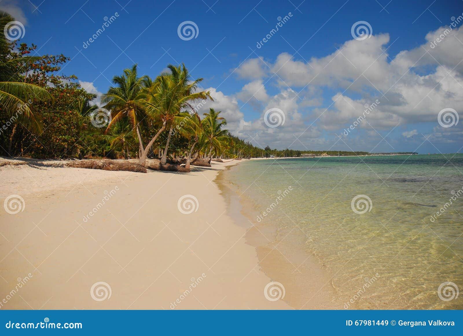 Palmeras y playa arenosa en la República Dominicana