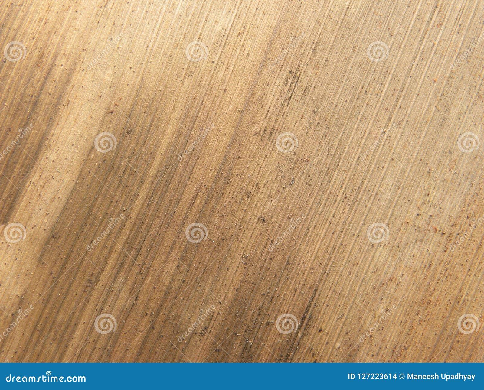 Palmette sèche d arec