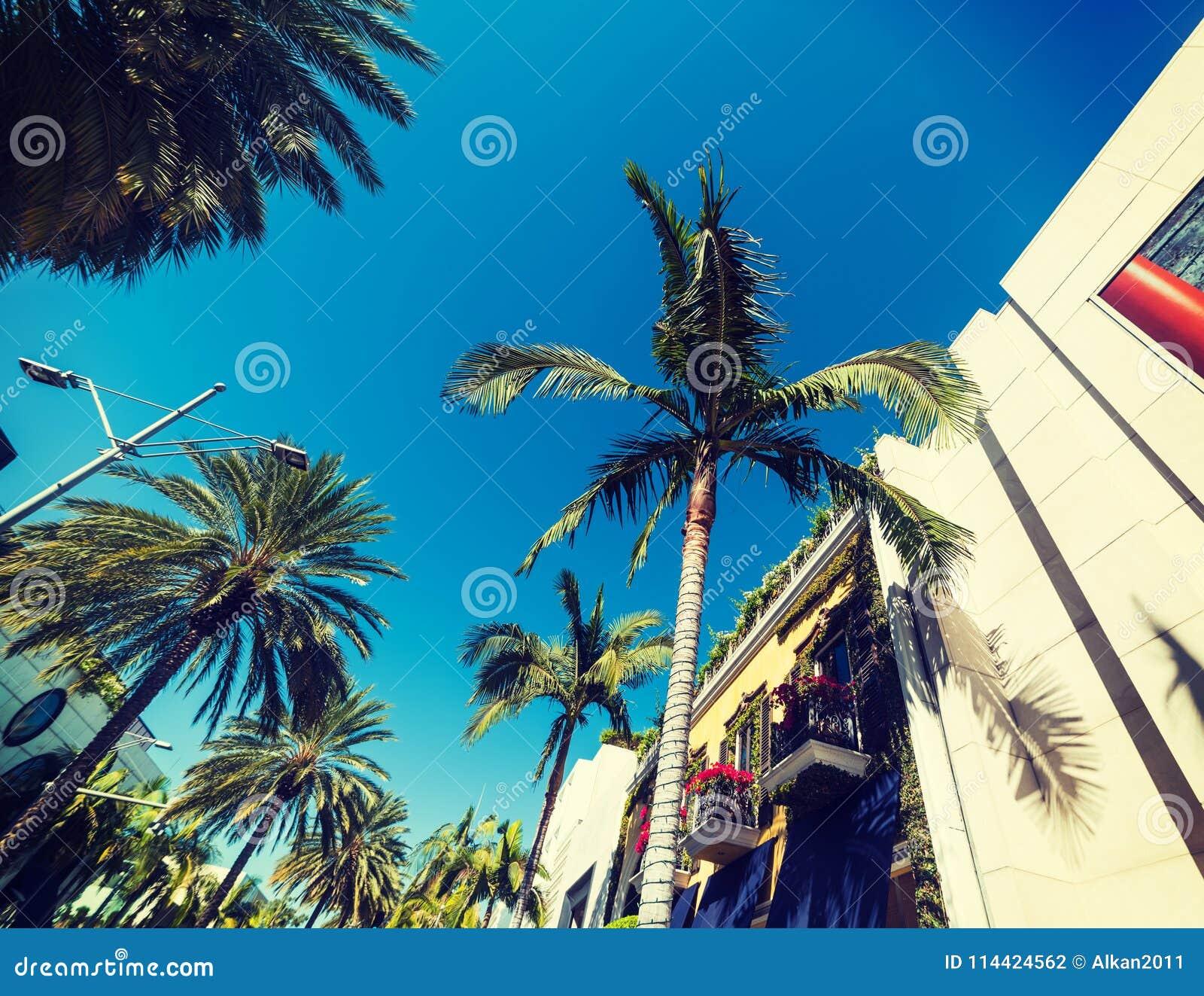 Palmiers et bâtiments élégants dans Rodeo Drive