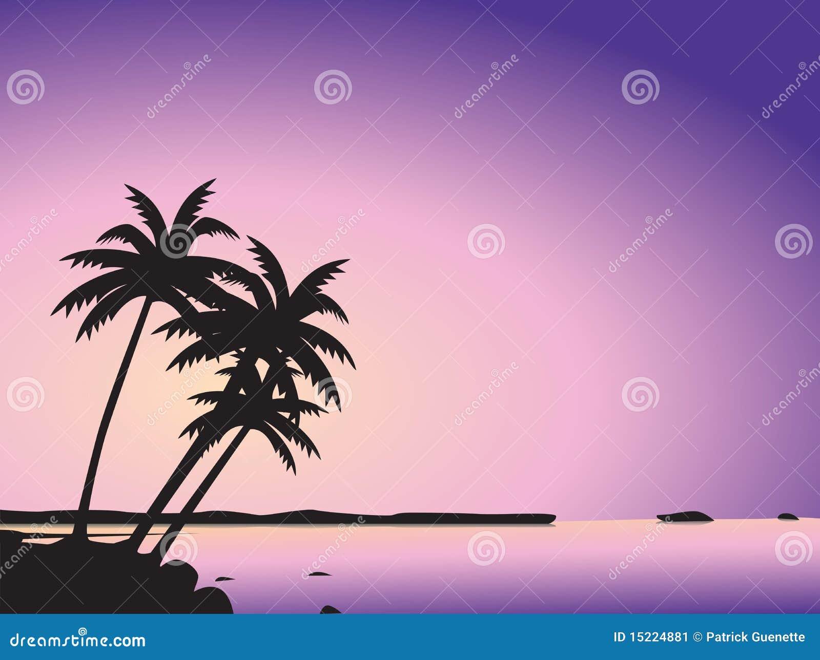 Palmiers et mer tropicaux