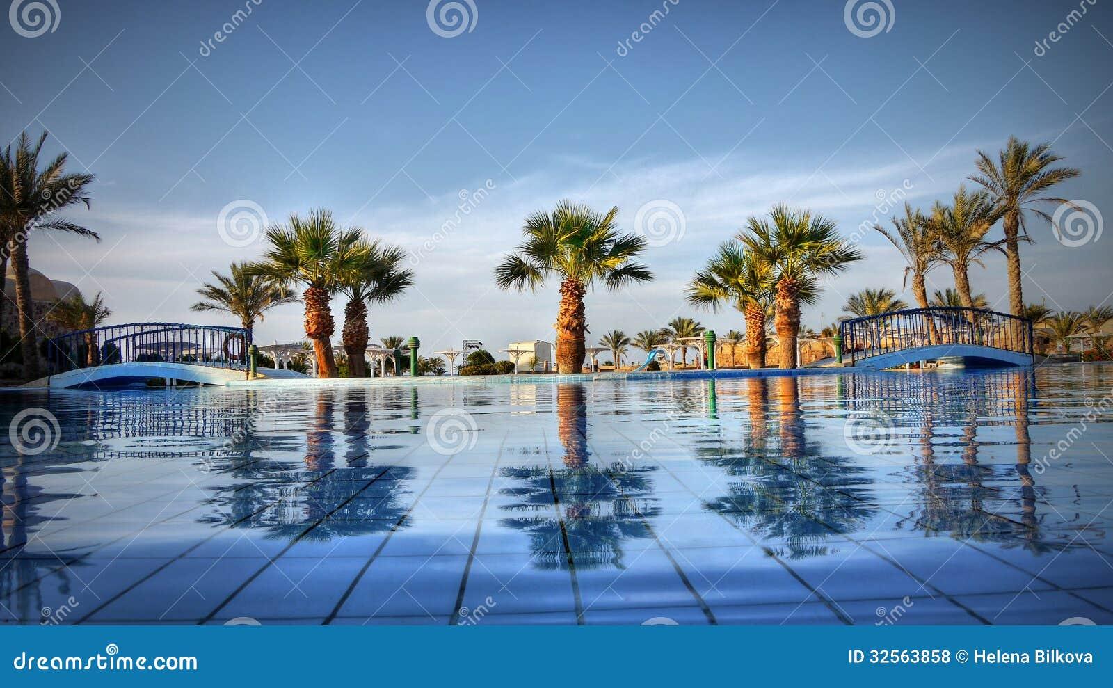 Palms Blue Water Luxury Garden Egypt Stock Photo Image 32563858