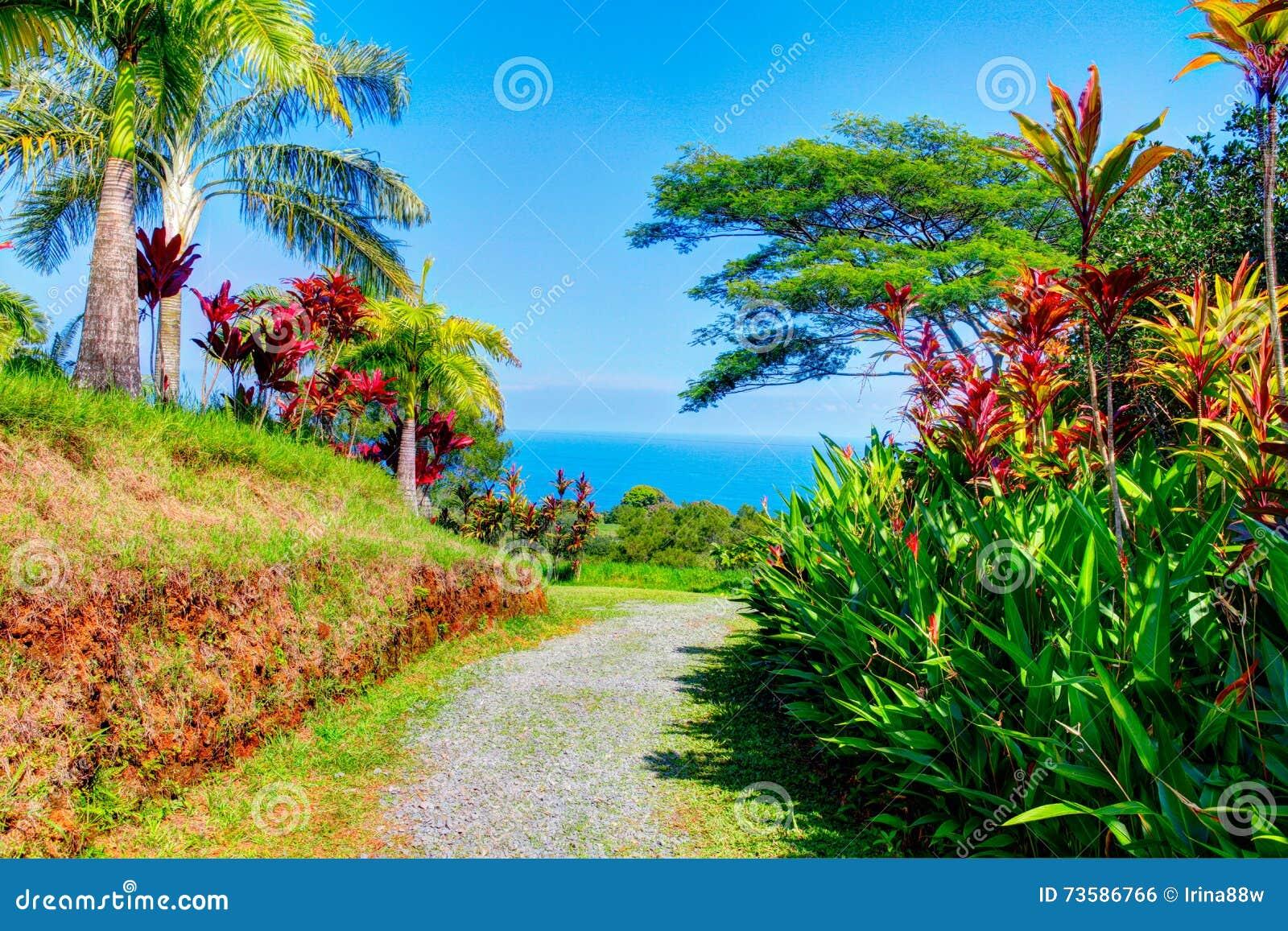 Garden Of Eden Kauai Hawaii Garden Ftempo