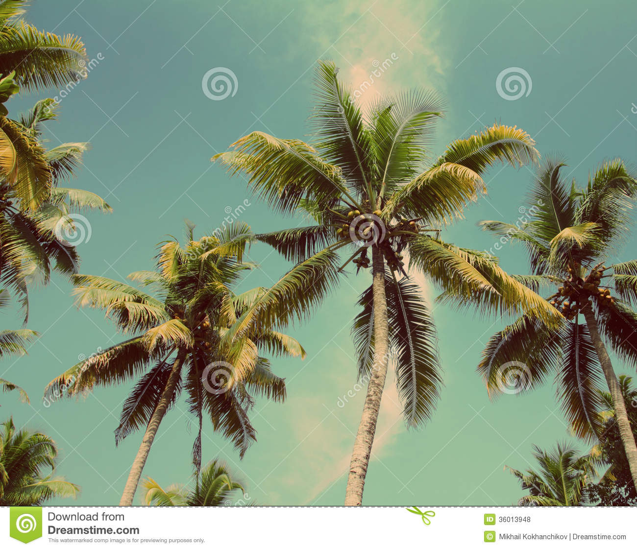 Palms Under Blue Sky - Vintage Retro Style Royalty Free ...