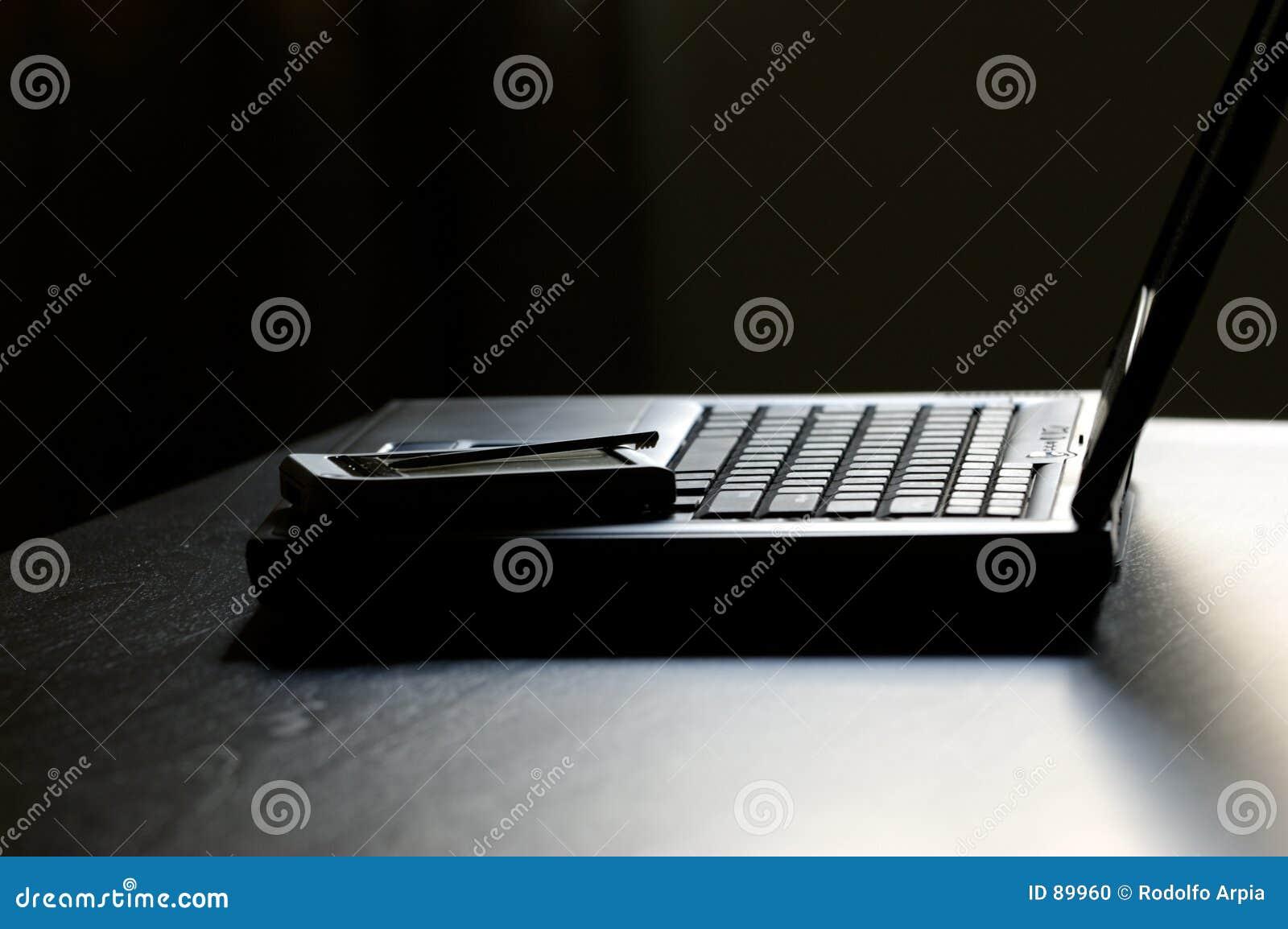 Palmtop na laptopa
