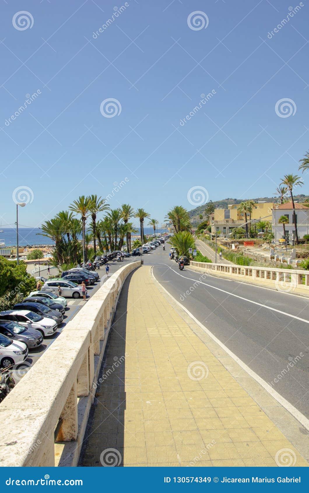 Palmträdgata på stranden av Monaco