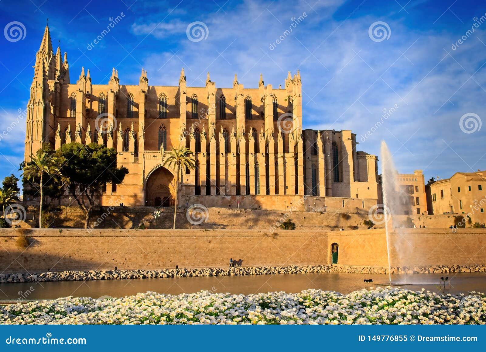 Palmy katedra, wieczór, złota godzina, kąpać się w ciepłym świetle słonecznym, niebieskie niebo, białe chmury, podia w przedpolu,